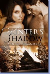 wintersshadow