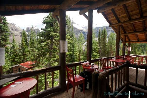 plain-of-six-glaciers-tea-house-trail-46