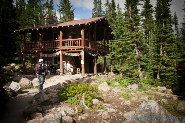 plain-of-six-glaciers-tea-house-trail-56